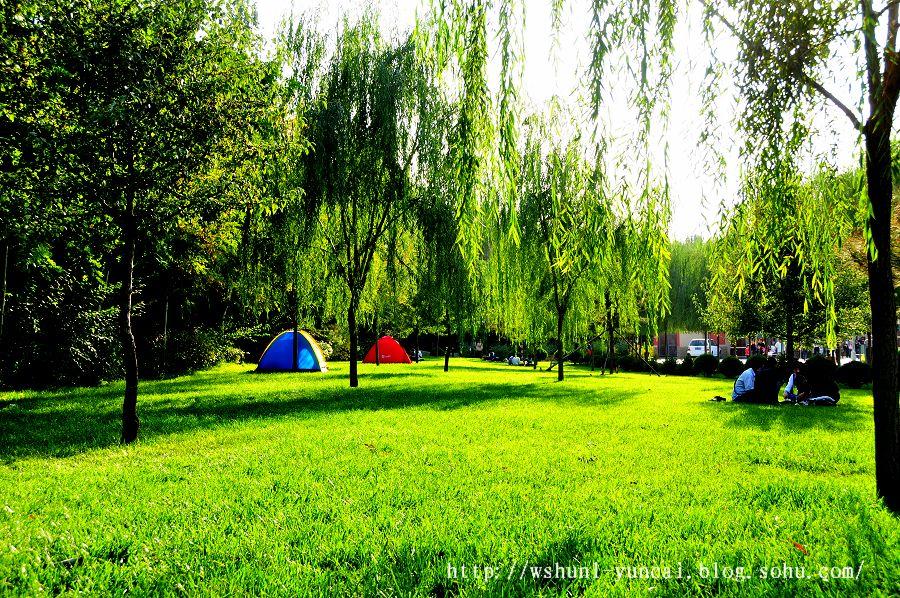 泸州森林公园公园和别墅随摄景色葫芦岛价格银川图片