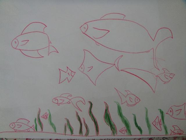 幼儿园画鱼步骤