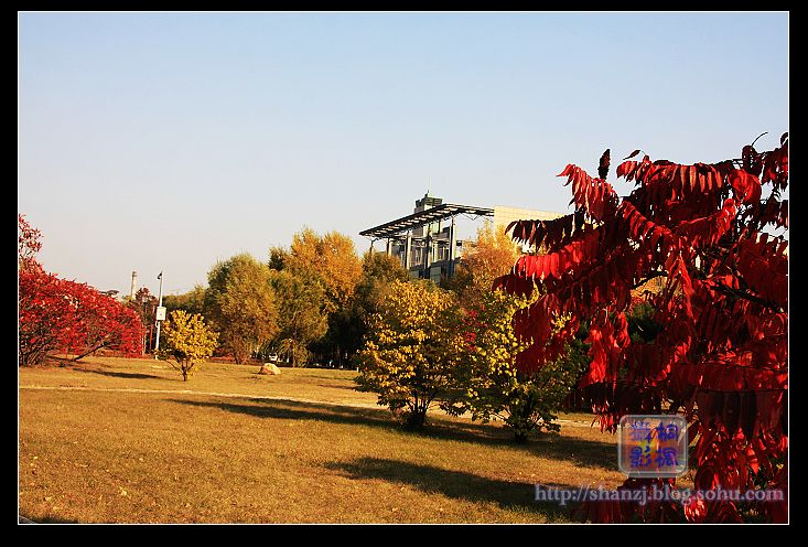 秋天校园美丽的景色_校园美丽的景色_校园的