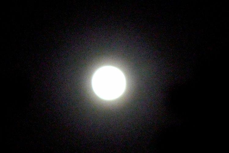 我推开窗户,人影不见一个,只有月亮站在窗外.