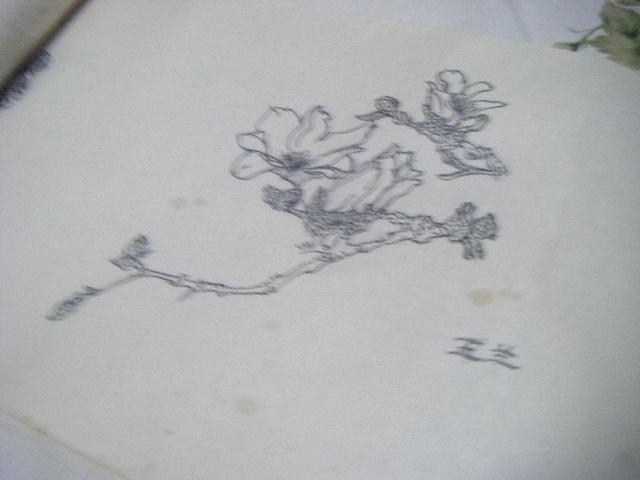 卷纸画图片步骤图片工艺品