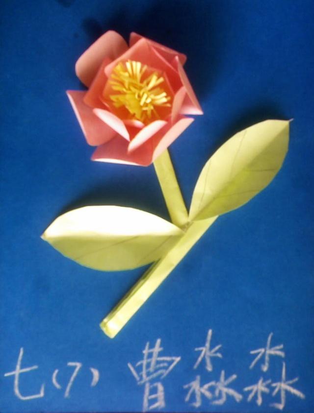 """七年级〈美术〉下册第5课""""纸的立方表现——纸浮雕""""学生作业精彩呈现"""