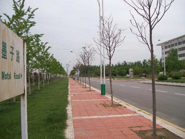 墨子故里 枣庄学院考研又传喜讯 附校园美景