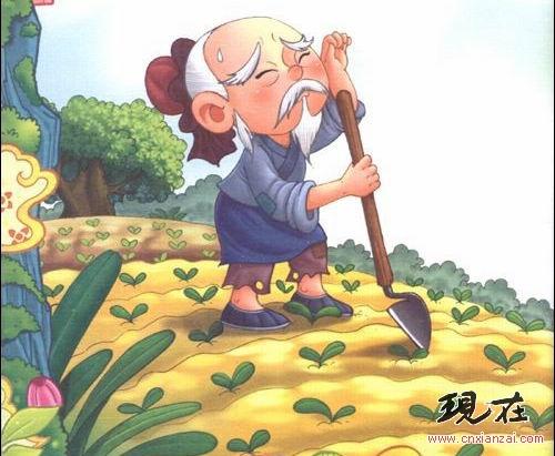节约粮食 儿童画