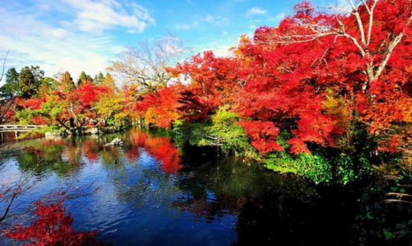 红色夏日风景图片