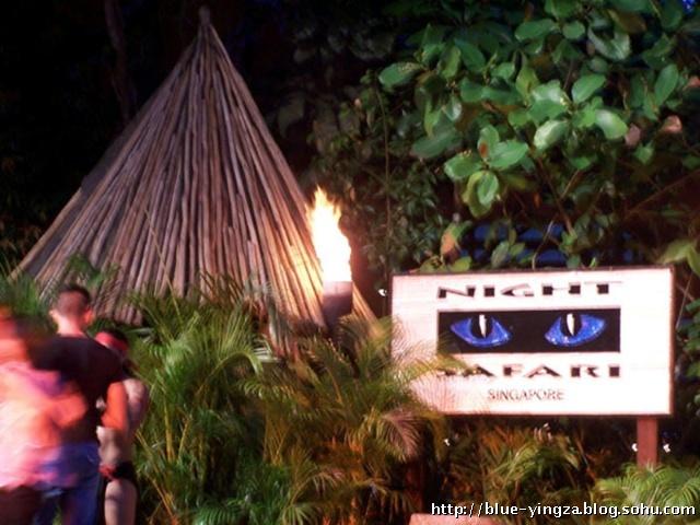 行走日记——北京→泰国,新加坡(下) 夜间野生动物园被誉为全世界最