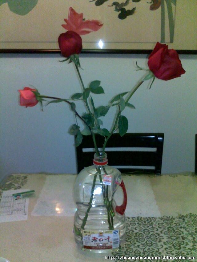 擦是什么意思_情人节——三朵玫瑰花 图片-咖啡不加糖-搜狐博客